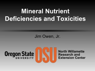 Mineral Nutrient Deficiencies and Toxicities