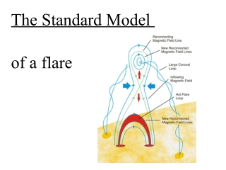 The Standard Model of a flare