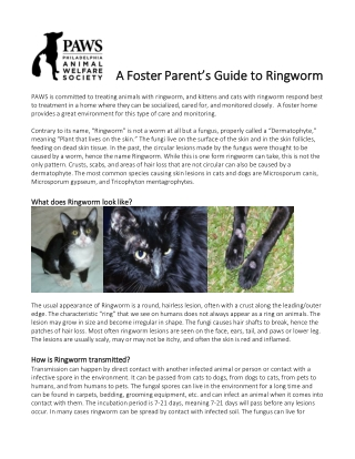 A Foster Parent's Guide to Ringworm A Foster Parent's Guide to Ringworm