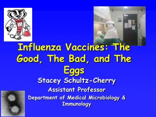 Flu Immunizations: The Great, The Awful, and The Eggs