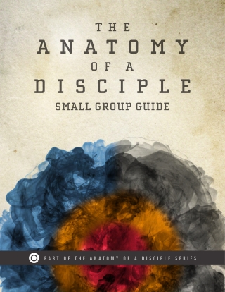What does it mean to be a disciple of Christ? In this eight-session small group experience, Brad Bell uses the simple but very intentional life of Jesus Christ to illustrate what authentic