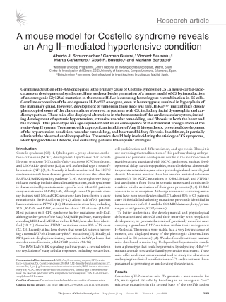 A mouse model for Costello syndrome reveals an Ang II–mediated hypertensive condition