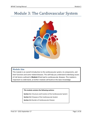 Module 3: The Cardiovascular System