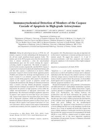 Immunocytochemical Detection of Members of the Caspase Cascade of Apoptosis in High-grade Astrocytomas