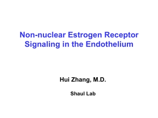 Non-nuclear Estrogen Receptor Signaling in the Endothelium
