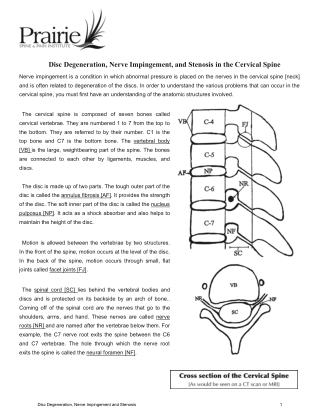 Disc Degeneration, Nerve Impingement, and Stenosis in the Cervical Spine