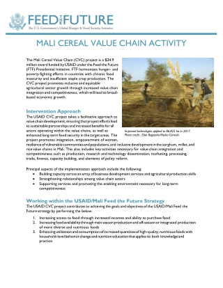 MALI CEREAL VALUE CHAIN ACTIVITY