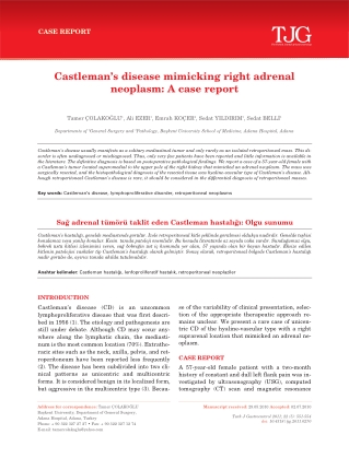 Castleman's disease mimicking right adrenal neoplasm: A case report