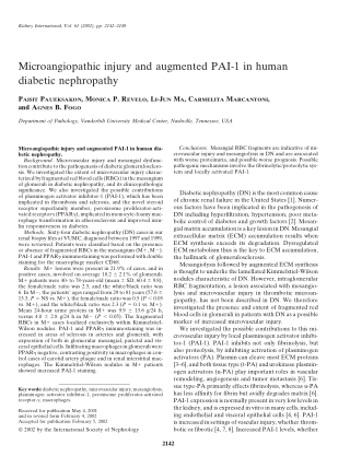 Microangiopathic injury and augmented PAI-1 in human diabetic nephropathy
