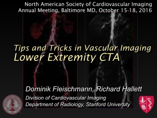 Lower Extremity CTA