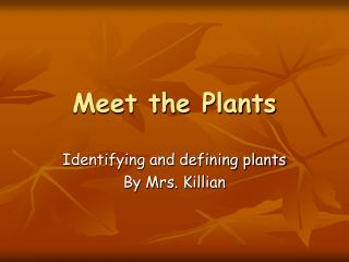 Meet the Plants