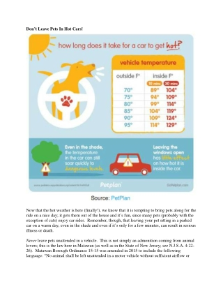 Don't Leave Pets In Hot Cars!