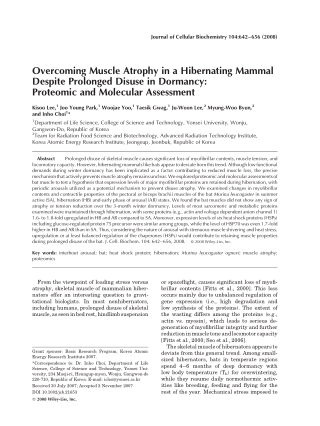 Overcoming Muscle Atrophy in a Hibernating Mammal Despite Prolonged Disuse in Dormancy: Proteomic and Molecular Assessment