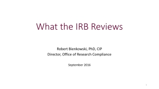 What the IRB Reviews