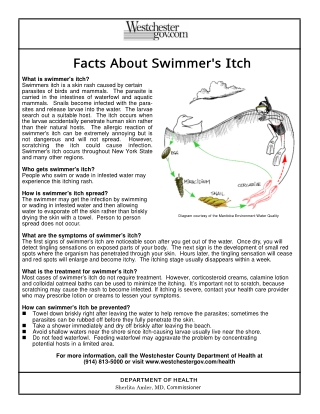 Facts About Swimmer's Itch