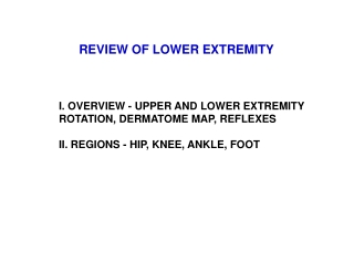 REVIEW OF LOWER EXTREMITY