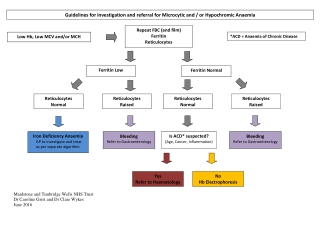 Guidelines for investigation and referral for Microcytic and / or Hypochromic Anaemia