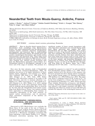 Neanderthal Teeth from Moula-Guercy, Arde `che, France