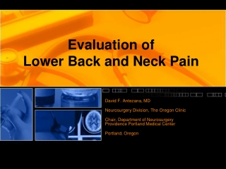 Lower Back and Neck Pain
