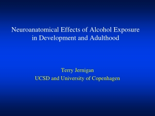 Neuroanatomical Effects of Alcohol Exposure in Development and Adulthood