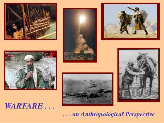 . . . an Anthropological Point of view