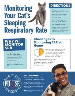 Monitoring Your Cat's Sleeping Respiratory Rate
