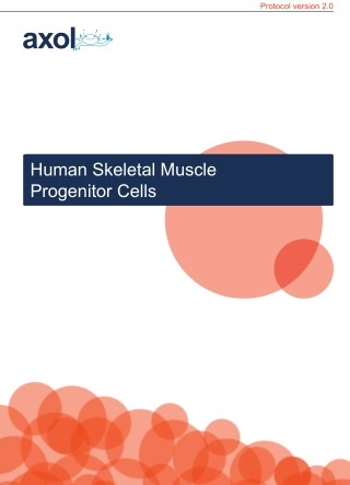 Human Skeletal Muscle Progenitor Cells
