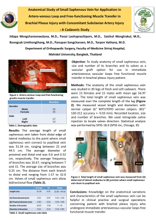 Anatomical Study of Small Saphenous Vein for Application in Artero-venous Loop and Free-functioning Muscle Transfer in Brachial Plexus Injury with Concomitant Subclavian Artery Injury : A