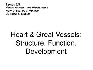 Science 224 Human Anatomy and Physiology II Week 2; Lecture 1; Monday Dr. Stuart S. Sumida