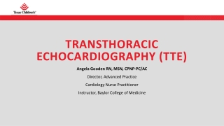 TRANSTHORACIC ECHOCARDIOGRAPHY (TTE)
