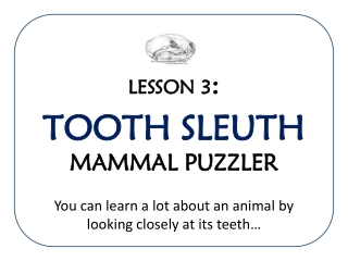 TOOTH SLEUTH TOOTH SLEUTH