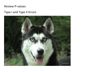 Review P-values Type I and Type II Errors