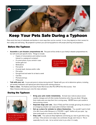 Keep Your Pets Safe During a Typhoon