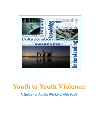 Youth to Youth Violence:
