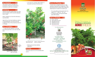 Basic Principles of Planting and Managing ACKEE Trees