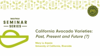 California Avocado Varieties: Past, Present and Future (?)