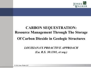 CARBON SEQUESTRATION: Resource Management Through The Storage Of Carbon Dioxide in Geologic Structures