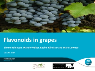Flavonoids in grapes
