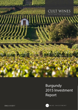 Burgundy 2015 Investment Report