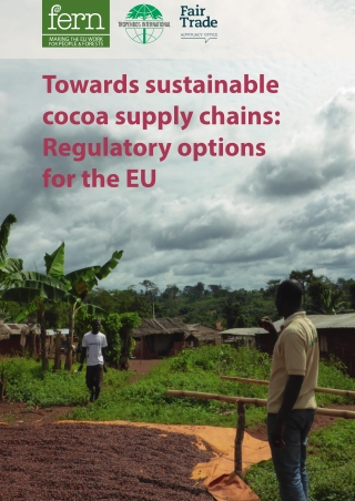 Towards sustainable cocoa supply chains: Regulatory options for the EU
