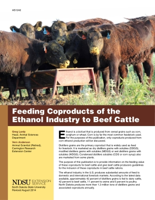 Feeding Coproducts of the Ethanol Industry to Beef CattleE
