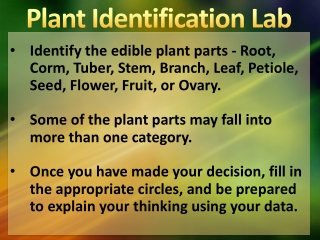 Identify the edible plant parts - Root, Corm, Tuber, Stem, Branch, Leaf, Petiole, Seed, Flower, Fruit, or Ovary.
