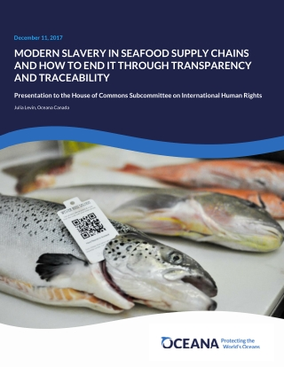 MODERN SLAVERY IN SEAFOOD SUPPLY CHAINS AND HOW TO END IT THROUGH TRANSPARENCY AND TRACEABILITY