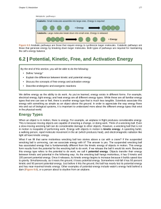 6.2 | Potential, Kinetic, Free, and Activation Energy
