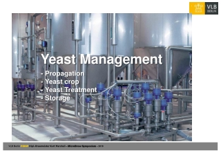 Yeast Management