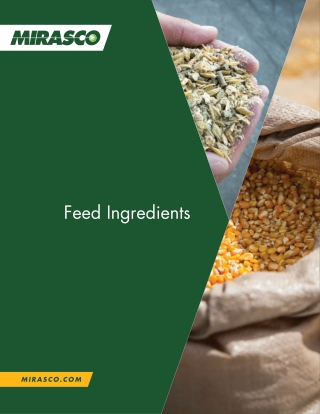 Feed Ingredients
