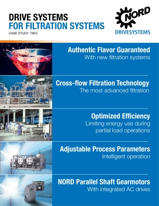 DRIVE SYSTEMS FOR FILTRATION SYSTEMS