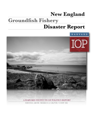 New England Groundfish Fishery Disaster Report