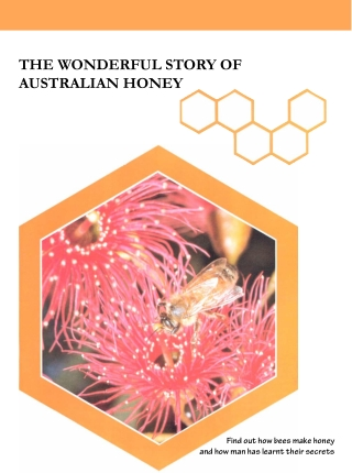 THE WONDERFUL STORY OF AUSTRALIAN HONEY