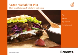 "Vegan ""Kebab"" in Pita"